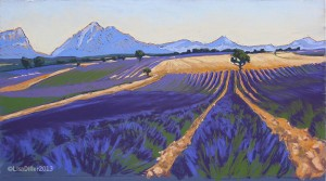 Lavender at Valensole